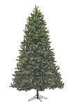 Bridgeport Douglas Fir - 7.5ft Artificial Christmas Tree - Staylit® Clear lights